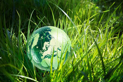 Glass globe in the grass. Environment concept, glass globe in the green grass stock photo
