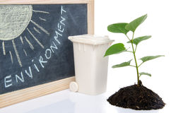 Environment concept with a green small plant, a trash can and th Stock Photo