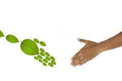 Environment concept. royalty free stock photos