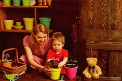 Environment concept. Little child help mother planting flower to new pot, environment. Environment and nature. Make the. Natural environment your habit royalty free stock photography