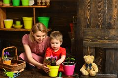Environment concept. Little child help mother planting flower to new pot, environment. Environment and nature. Make the. Natural environment your habit stock image