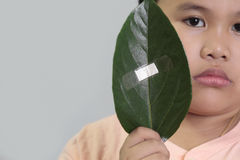 Environment conservation. Concept - boy holding a leaf with bandage Stock Image
