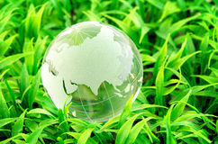 Environment and conservation. Environment concept, glass globe in the grass Royalty Free Stock Image