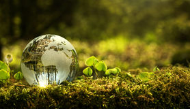 Environment conservation concept stock images