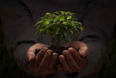 Environment conservation concept Stock Photos