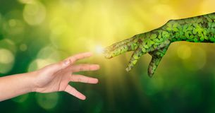 Environment Earth Day Hands from nature are helping people. Nature`s concept