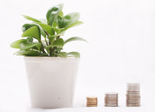 Environment economy Royalty Free Stock Image