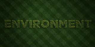 ENVIRONMENT - fresh Grass letters with flowers and dandelions - 3D rendered royalty free stock image Royalty Free Stock Images
