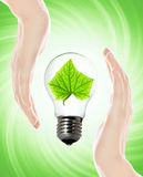 Environment friendly bulb stock photography