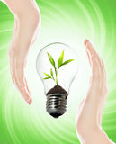Environment friendly bulb Royalty Free Stock Photos