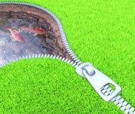 Environment Manipulation Royalty Free Stock Image