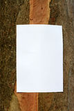 Environment Notice. Blank sign on a tree trunk, awaiting details of your event royalty free stock photos