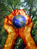 Environment in our hands Royalty Free Stock Photos