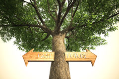 Environment past future tree sign Royalty Free Stock Images