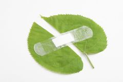 Environment protection Stock Photography
