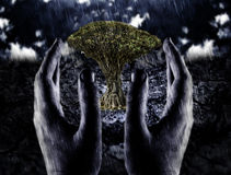 Environment, save nature. Save environment, nature - tree in hands and rain Royalty Free Stock Images