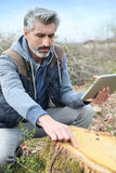 Environment scientist analysing tree trunk Royalty Free Stock Photo