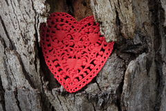 Environment: tree trunk red paper heart Stock Photo