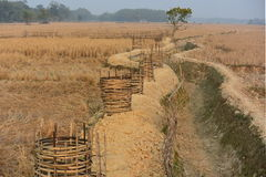 ENVIRONMENT WATER IRRIGATION CANAL INDIA Royalty Free Stock Photography