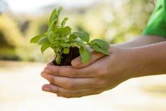 Environmental activist showing a plant Stock Photos