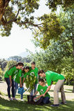 Environmental activists planting a tree in the park. On a sunny day stock photo