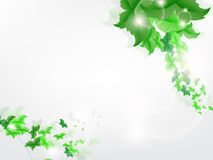 Environmental Background with green leaf butterflies. On a light green background Stock Photos