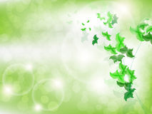 Environmental Background with green leaf butterflies. On a light green background with bokeh lights Stock Images