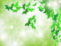 Environmental Background with green leaf butterflies. On a light green background with bokeh lights Royalty Free Stock Photography