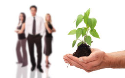 Environmental business team Stock Photography