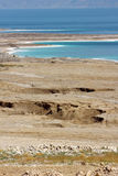 Environmental catastrophe on the Dead Sea, Israel Royalty Free Stock Photo