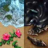 Environmental Concept Stock Photos