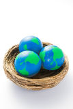 Environmental Concept Shot With Model Globes In Nest Royalty Free Stock Photography