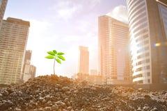 Environmental concept Royalty Free Stock Photos