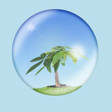 Environmental Conservation 1. Glass globe with tree and unpolluted air inside. Environmental conservation concept Royalty Free Stock Image