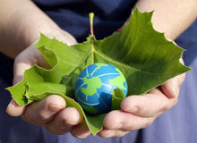 Environmental Conservation And Sustainability Stock Photography