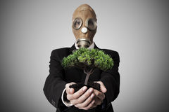 Environmental conservation. Businessman with gas mask and tree in hands, conservation and environment Stock Image