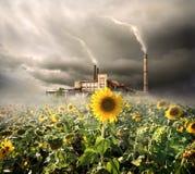 Environmental contamination Royalty Free Stock Photography