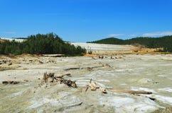 Environmental contamination Stock Photos