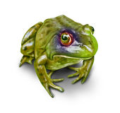 Environmental Damage And Conservation. Frog with a black eye as a concept of environmental damage to nature and the destruction to the environment as a symbol of Stock Photos