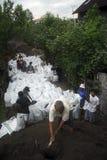 ENVIRONMENTAL DISASTER DAMAGE FLOOD Stock Photo