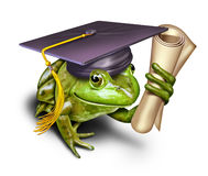 Environmental Education Stock Image