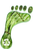 Environmental footprint stock illustration