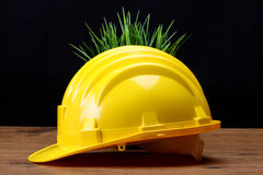 Environmental friendly industry concept Royalty Free Stock Photo