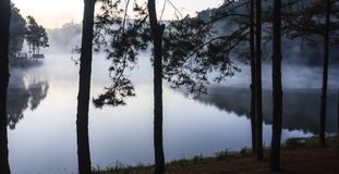 Environmental Friendly Outdoor Activity, Camping on the bank of the pretty serene lake glittering with sunlight and misty water Royalty Free Stock Photo