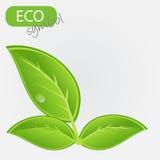 Environmental icon with plant. Stock Photo