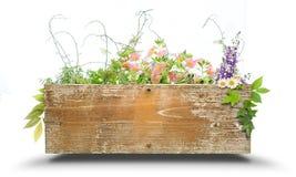 Environmental image Stock Photo