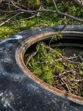 Wild dump of old tires Stock Photography