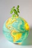 Environmental policy Royalty Free Stock Photo