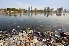 Environmental pollution. Sharjah Creek. UAE Stock Images