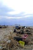Environmental pollution on a beach Stock Photos